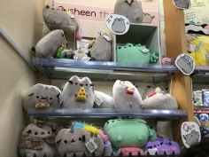 Pusheen @ Kiddyland